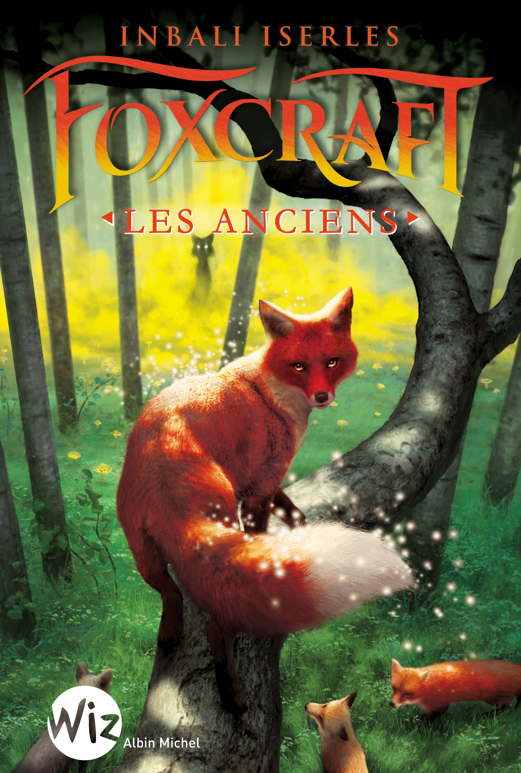The Tygrine Cat by Inbali Iserles (2008, Hardcover)