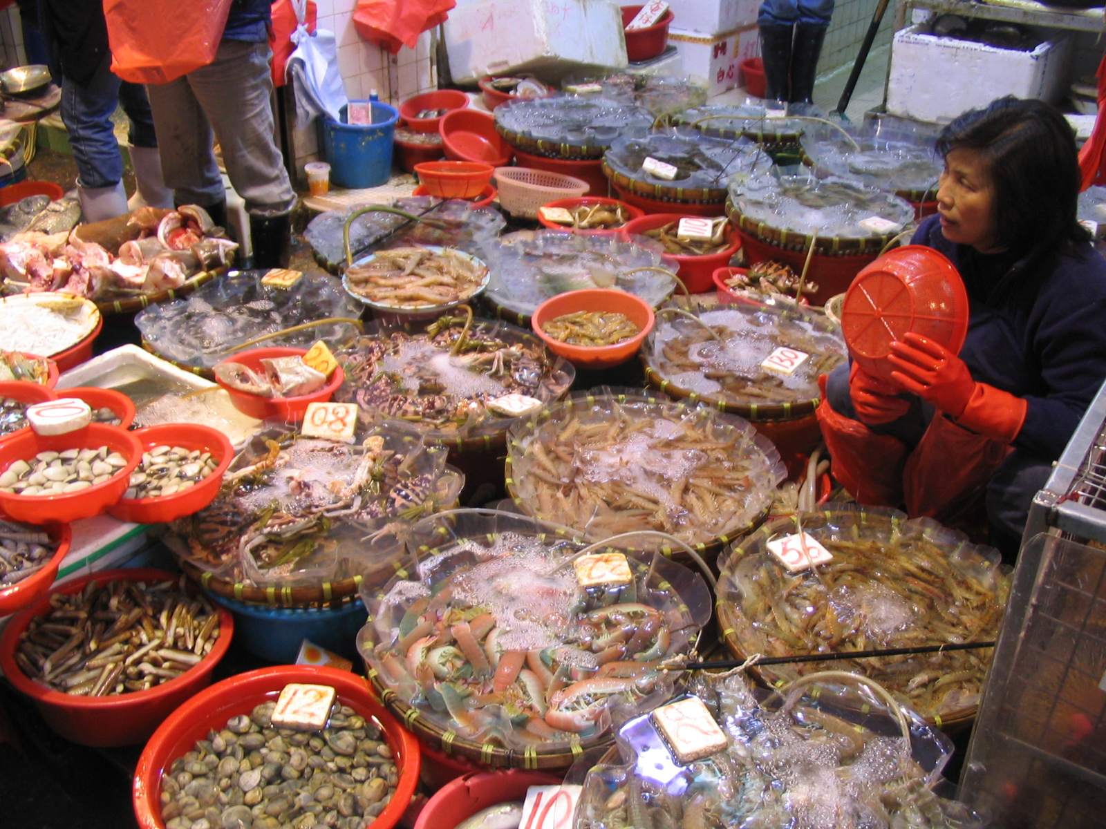 Henrik 39 s funky webpage gallery for Chinese fish market near me